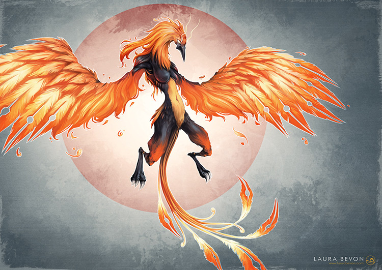 phoenix creatures wings fantasy concept art