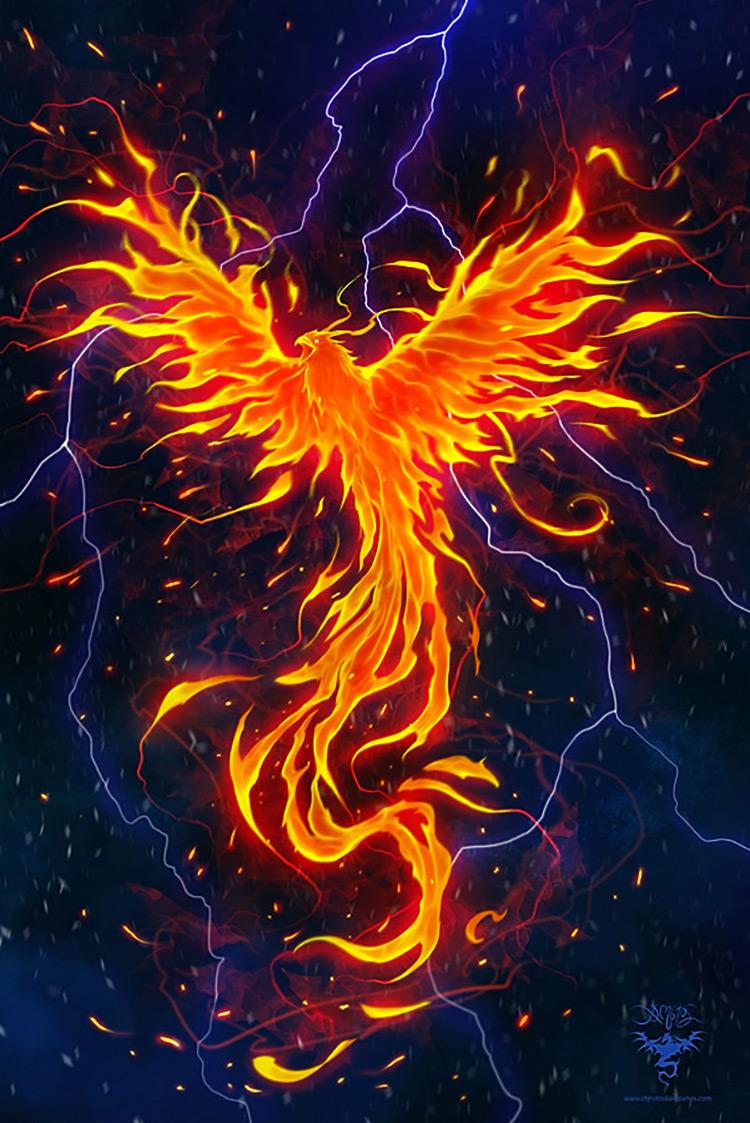 phoenix fantsy flight rage art concept