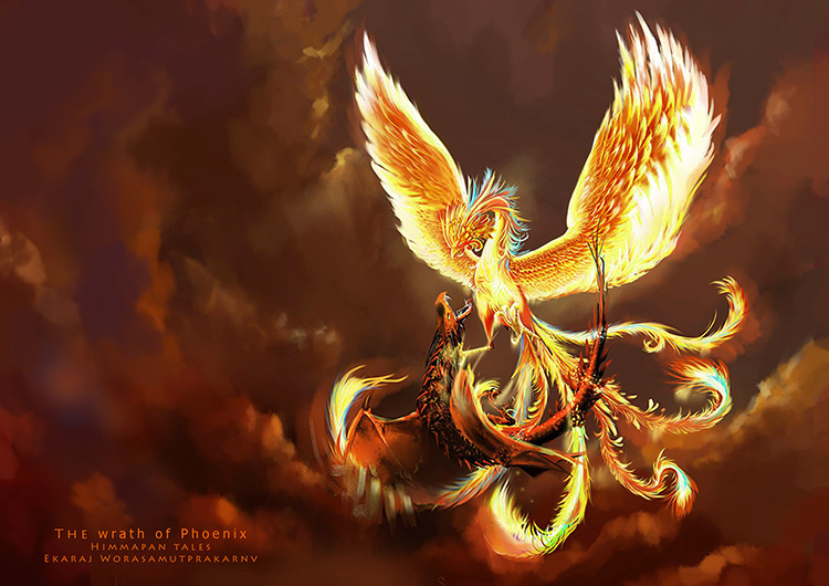 phoenix wrath fight creatures art illustration