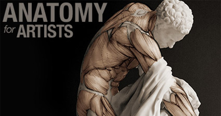 Scott Eaton anatomy course