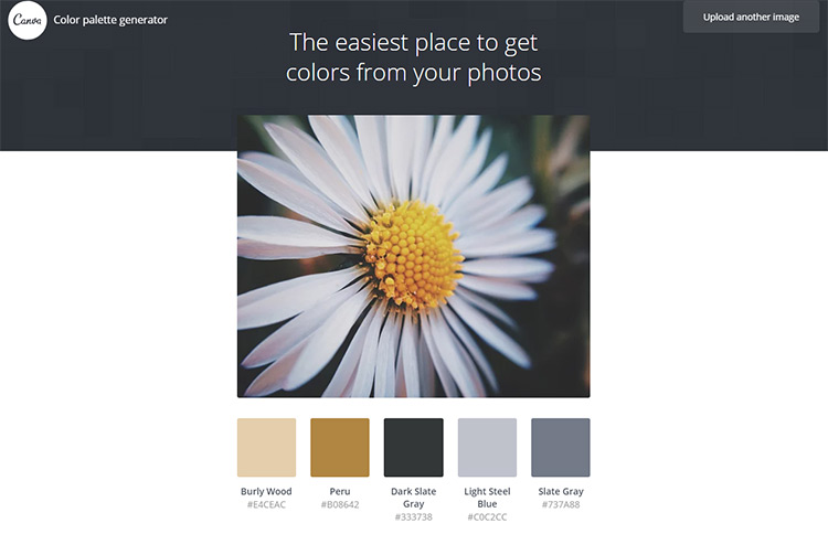 Best Color Palette Generators & Color Tools For Artists