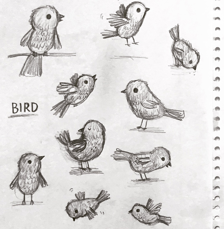Pencil drawings of birds