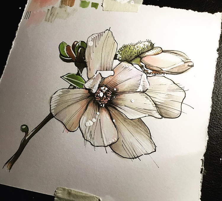 Drawing of a colorful flower