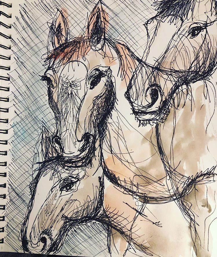 Quick sketches of horses