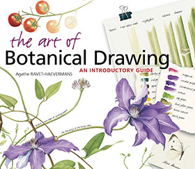 art of botanical drawing