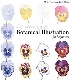 botanical illustration beginners book