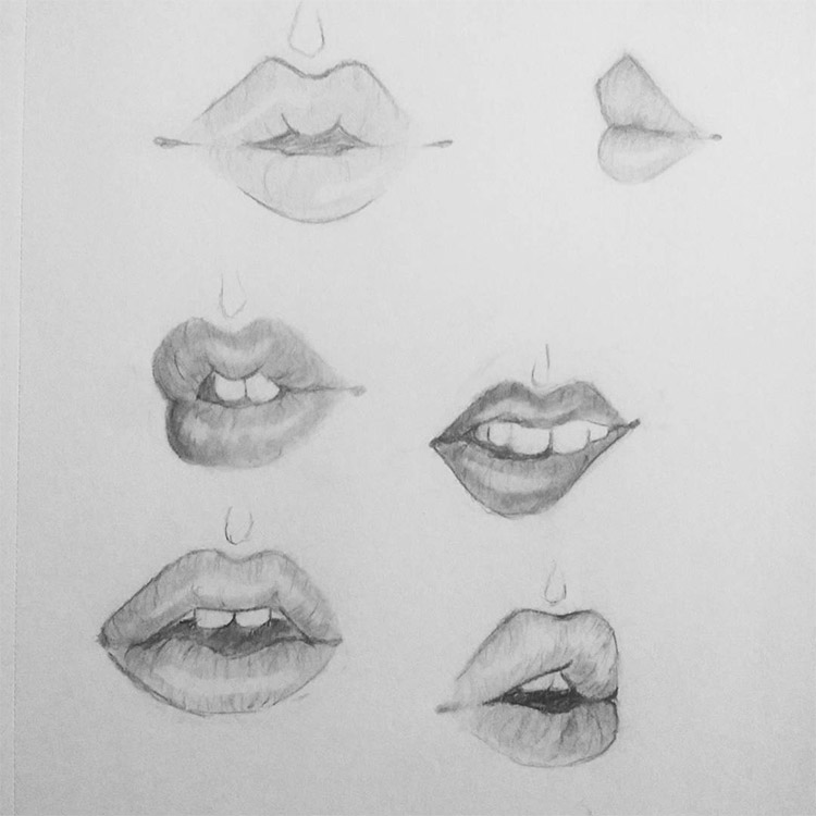 Small lip studies