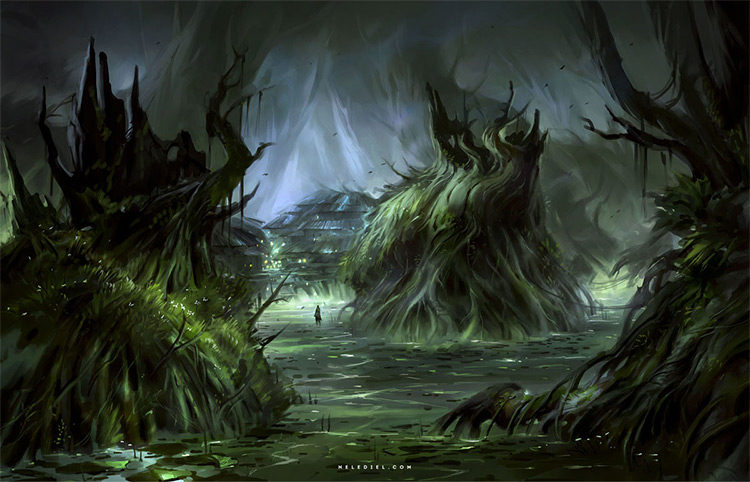 dark swamp mystery environment