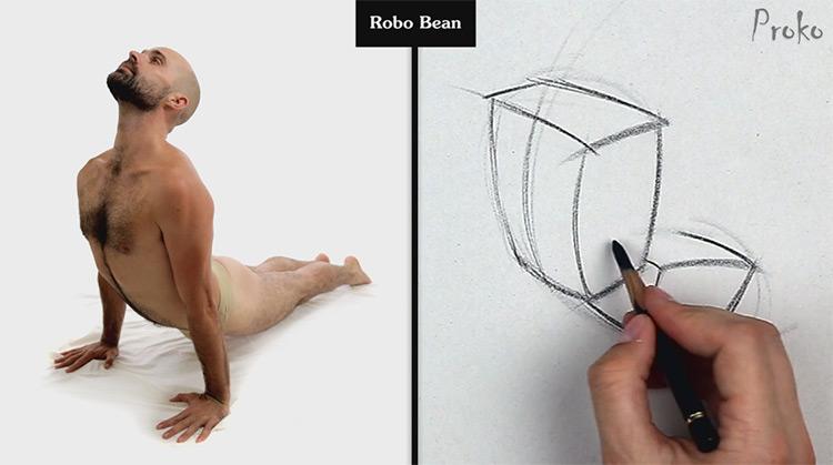 robo bean example proko