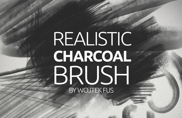 Charcoal pencil brushes