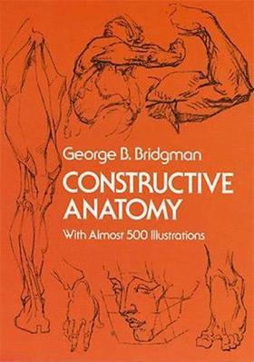 Top 10 Human Anatomy Books For Artists