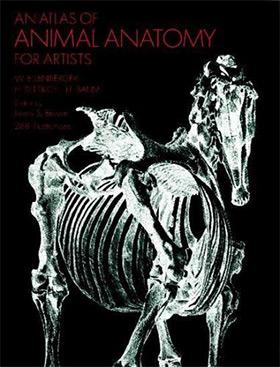atlas of animal anatomy