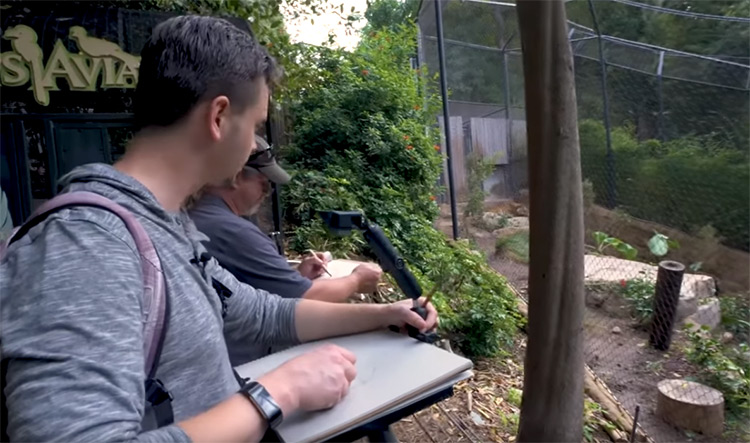 San Diego Zoo - Proko and Aaron drawing live