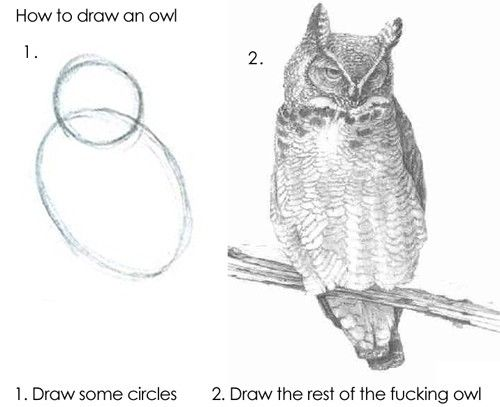 best books for learning to draw animals anatomy technique