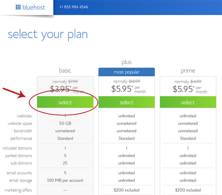 Select BlueHost plan type