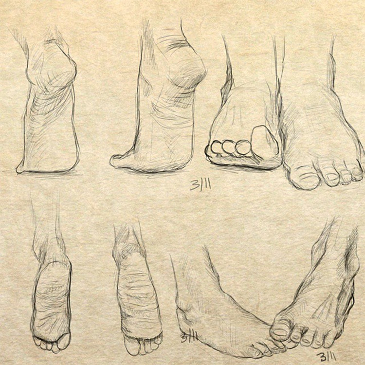65+ Drawings Of Feet: Sketches & Anatomy Studies