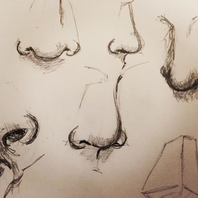 quick sketches of human noses
