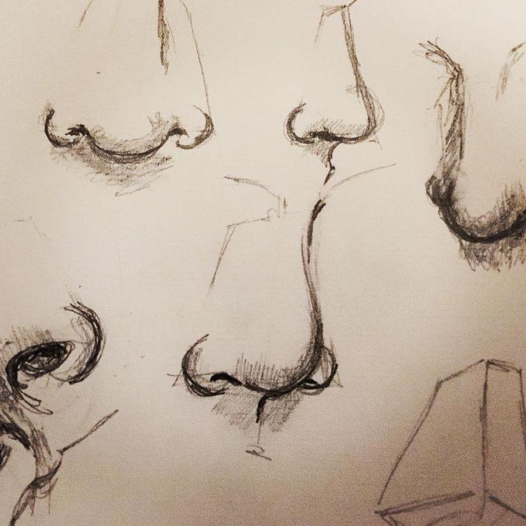 70 Drawings Of Noses Sketches Studies Sketchbook Examples