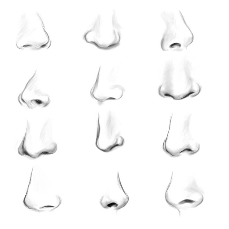 Digital drawings of noses