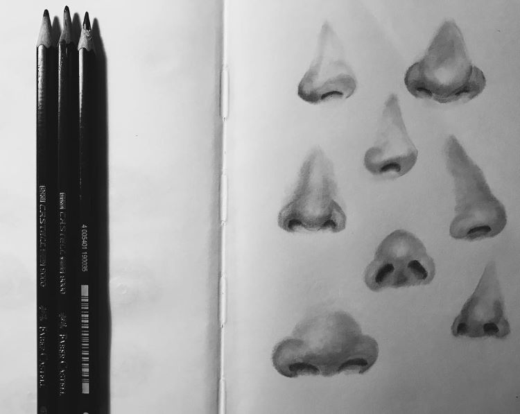 Various shapes of drawn noses