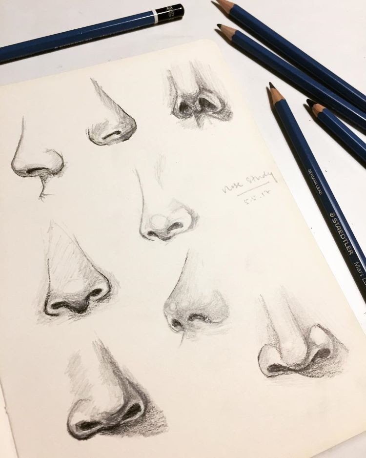 Sketchbook with detailed nose sketches