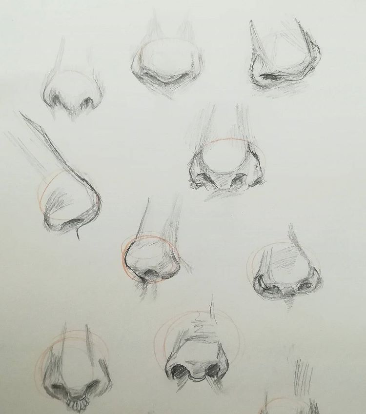 Practicing nose drawings