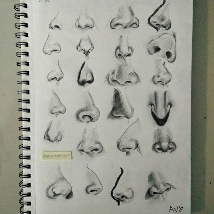 Noses drawn for different angles