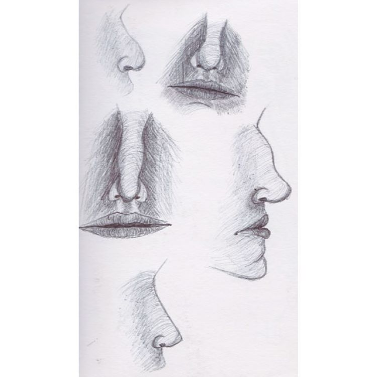Vertical photo of noses and faces