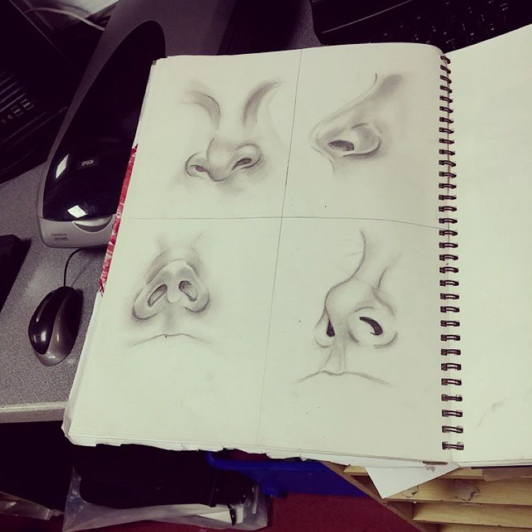Example sketchbook of noses