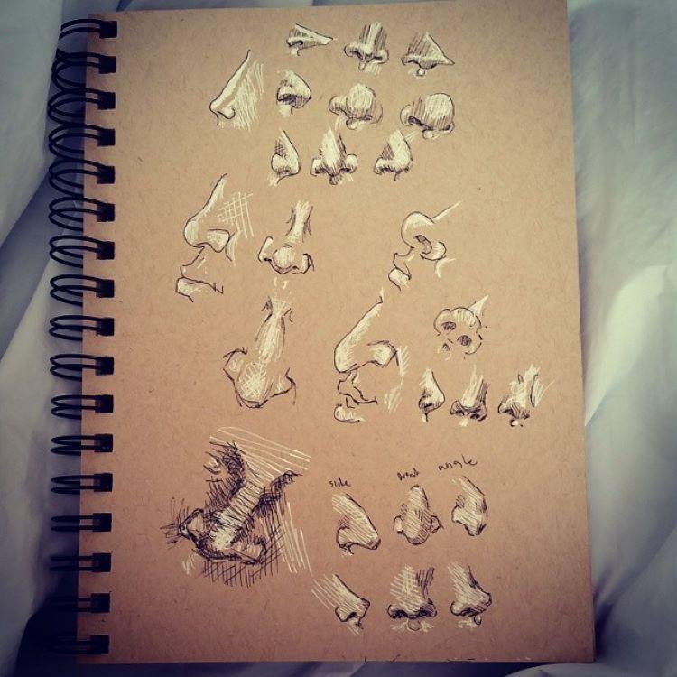 Toned brown sketchbook, practicing nose drawings