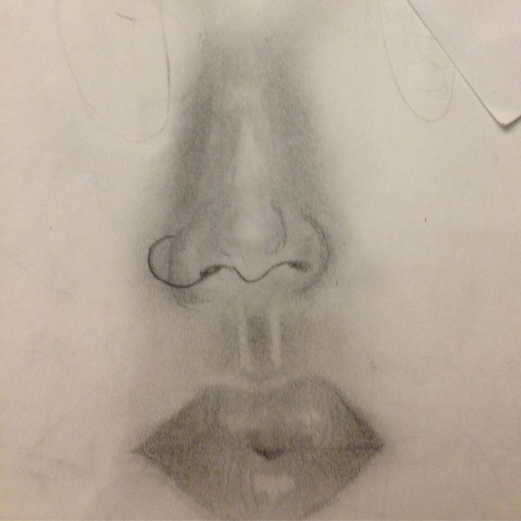 Dark drawing of noses and lips
