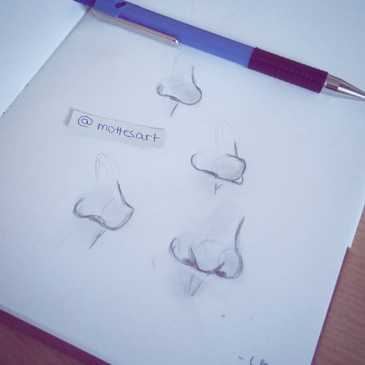 Studying noses with sketches