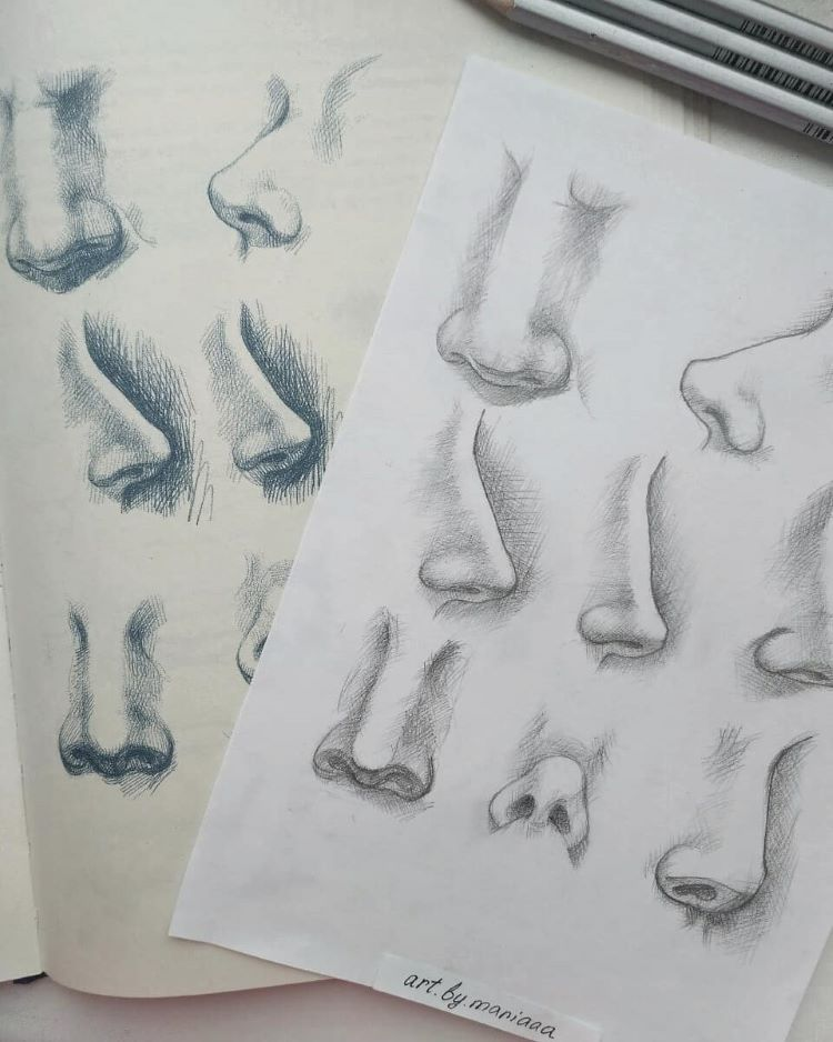 Human nose drawings examples