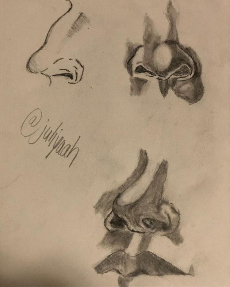 Toned light brown paper nose sketches