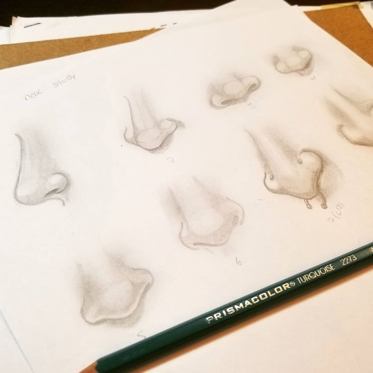 Nose drawings with nose rings