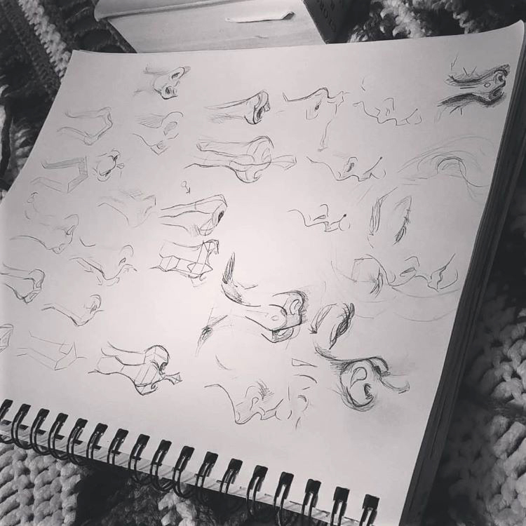 Quickly sketching noses from imagination