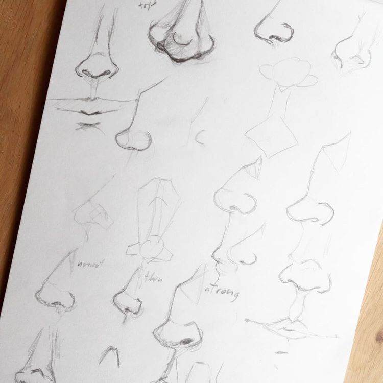 Practicing noses in pencil