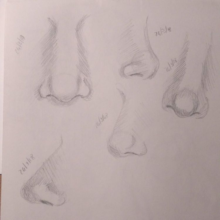 Very basic nose drawings