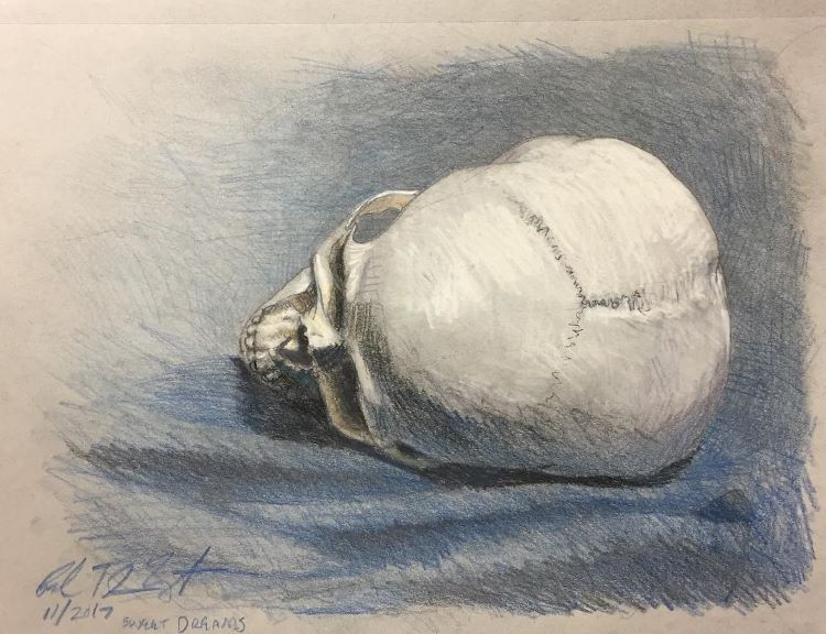 Skull drawing on its side