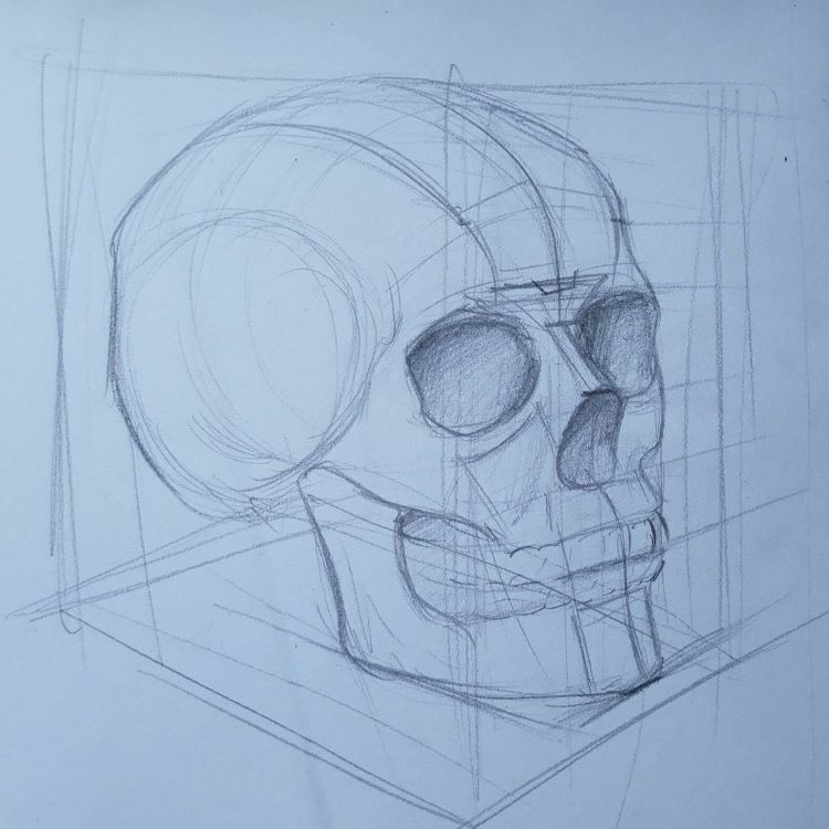Rough sketch outline of a skull