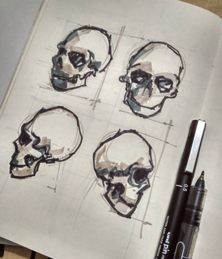 Practicing skull drawings