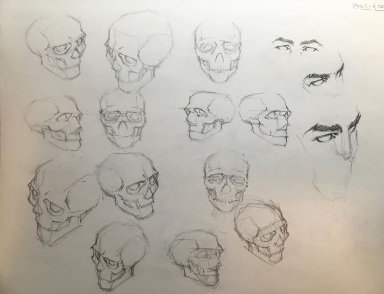 Cartoony practice for skulls