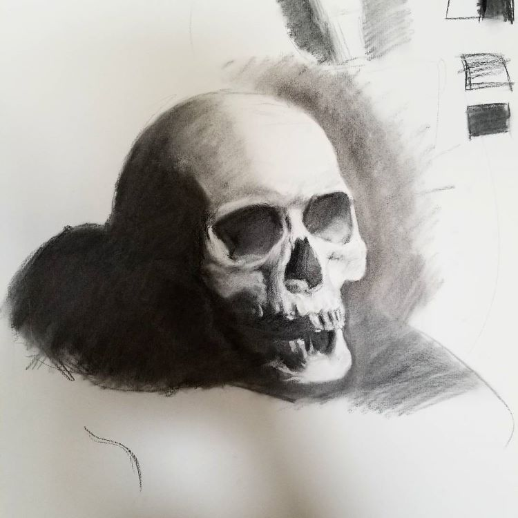 Dark shadows skull drawing