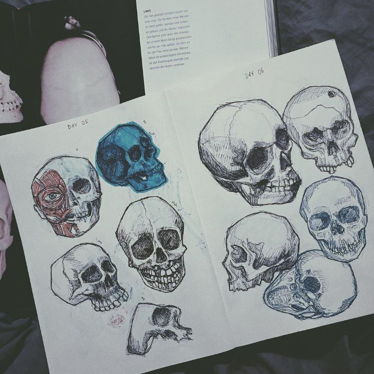 Rough skull drawings in notebook