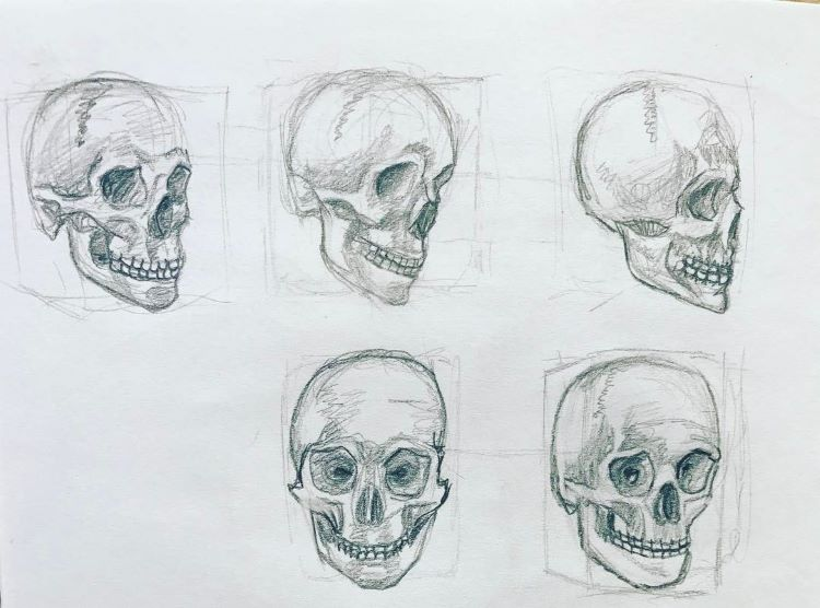 Quick skulls drawing