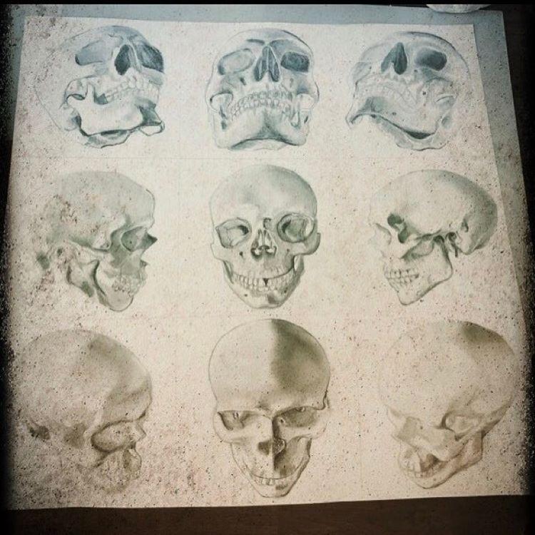 Erika Guadagnin skull drawings