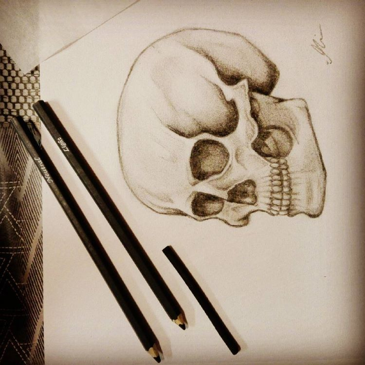 Detailed skull on white paper