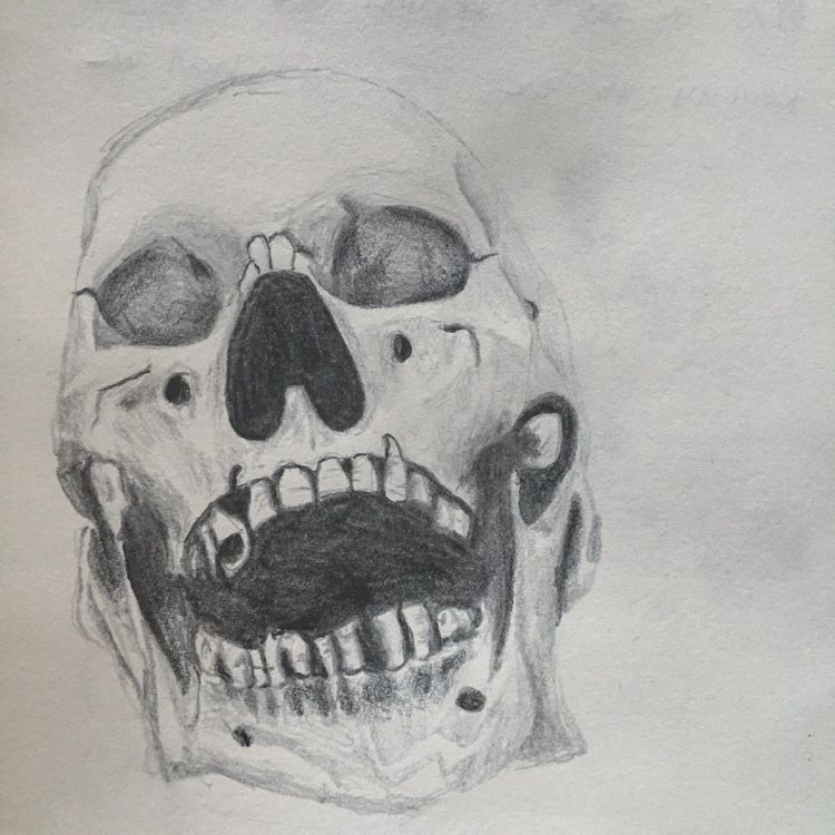 Drawing skull with open mouth