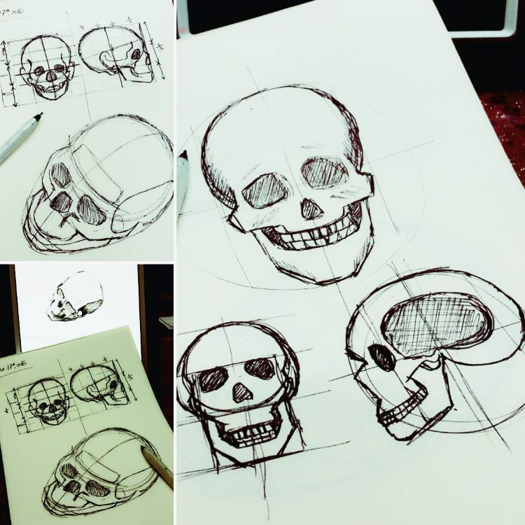 Skull drawings from multiple views