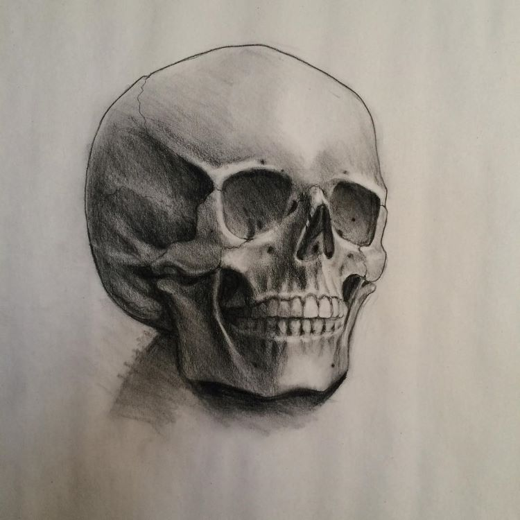 Dark realistic skull on paper